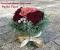 ���쥬��Ȥʥѥꥹ������ե��������� Peche Fleur